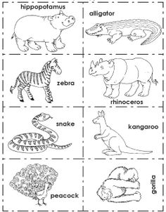 8 Best Images of Black And White Opposites Worksheets