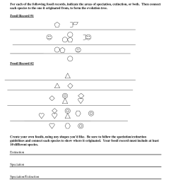 Fossils Worksheet 3rd Grade   Printable Worksheets and Activities for  Teachers [ 1650 x 1275 Pixel ]