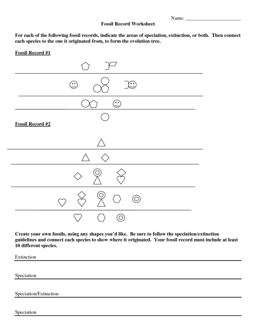 small resolution of Fossils Worksheet 3rd Grade   Printable Worksheets and Activities for  Teachers