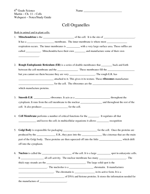 small resolution of 6th Grade Science Worksheets   Printable Worksheets and Activities for  Teachers