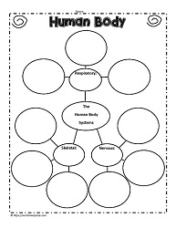 Human Body Teaching Activities Worksheets