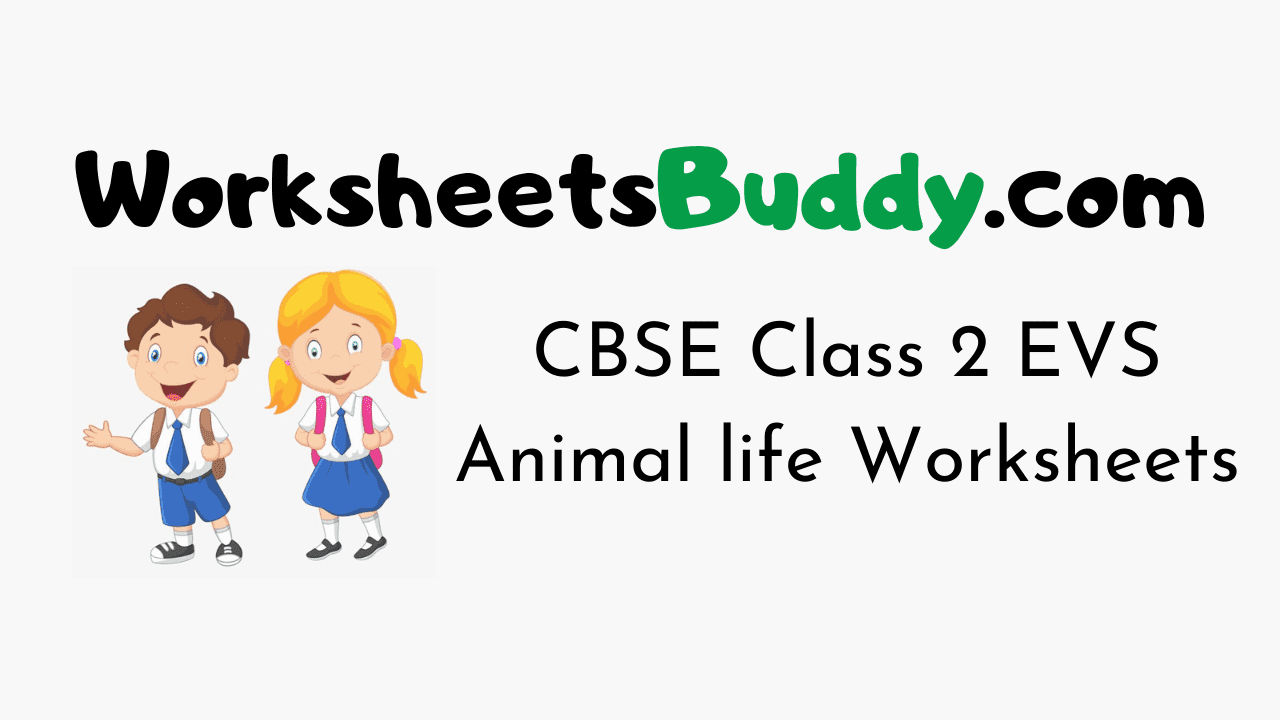CBSE Class 2 EVS Animal life Worksheets