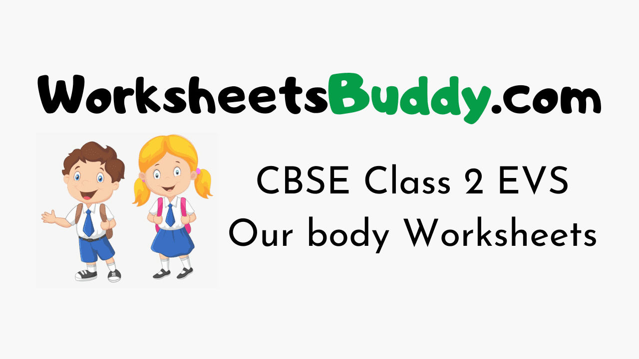CBSE Class 2 EVS Our body Worksheets