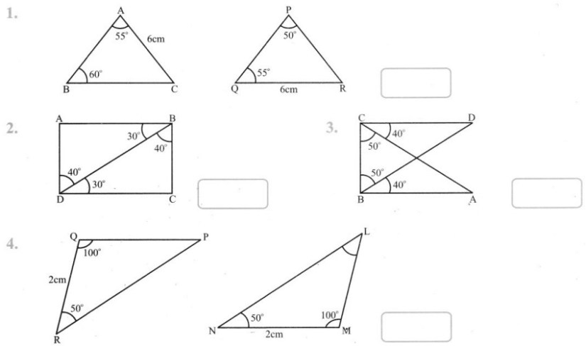 Grade 7 Congruence Of Triangles Worksheets Worksheets Buddy