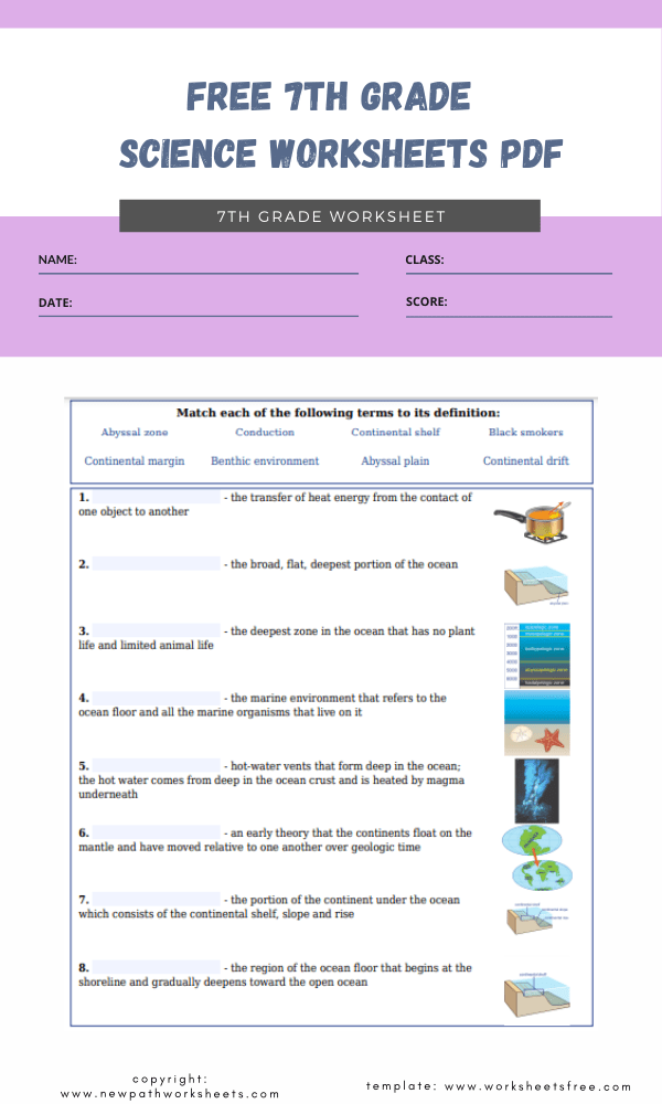 free 7th grade science worksheets pdf 1