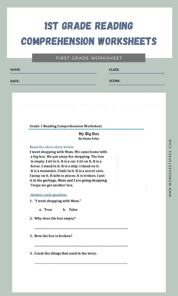 1st Grade Reading Comprehension Worksheets 3