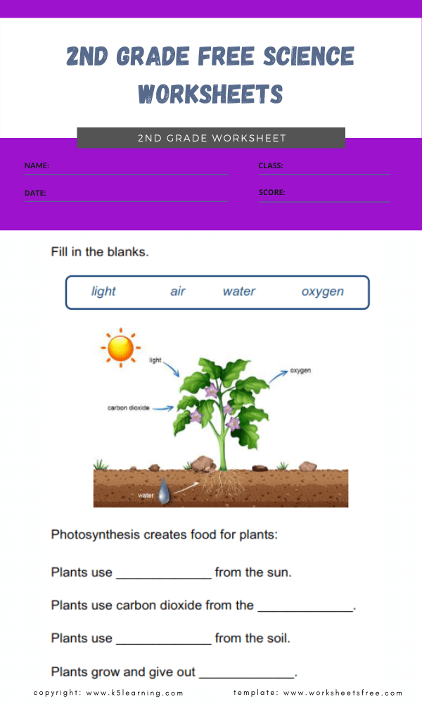 2nd grade free science worksheets 1