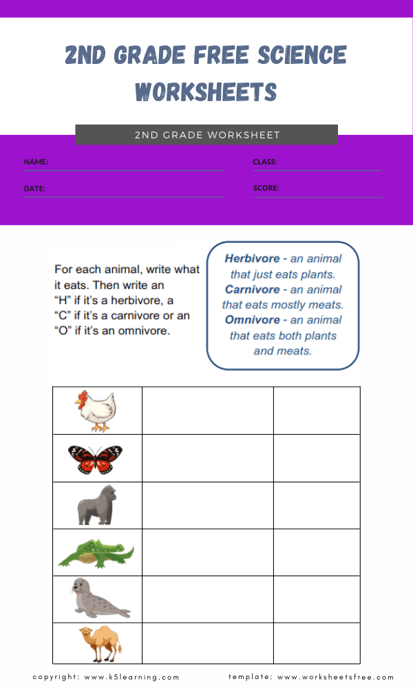 2nd grade free science worksheets 5