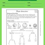4th Grade Tutoring Worksheets 4
