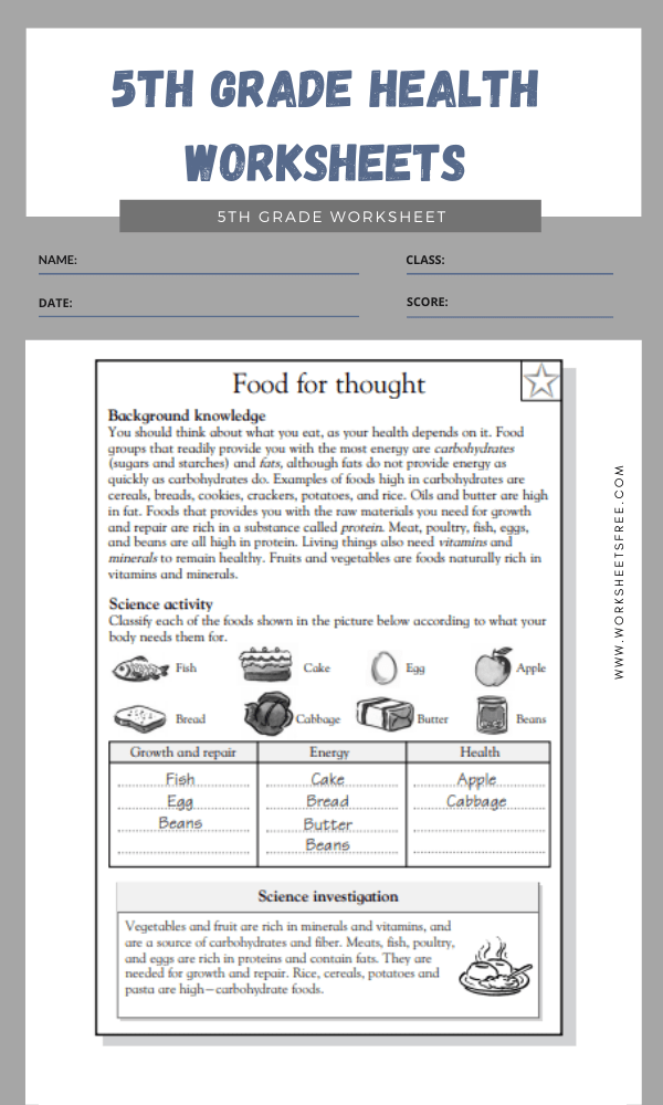5th Grade Health Worksheets 2