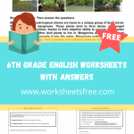 6th grade english worksheets with answers