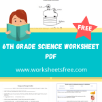 6th grade science worksheet pdf