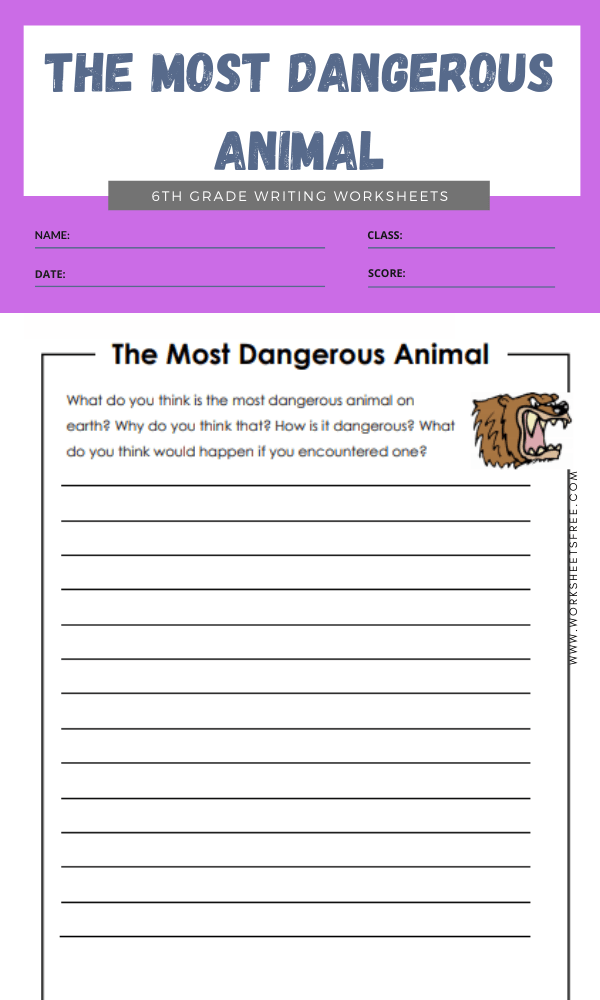 6th grade writing worksheets 7