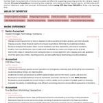 Accountant Resume Example 2