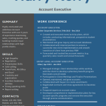 Accounts Executive Resume Example 5
