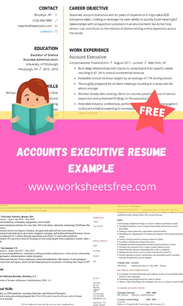 Accounts Executive Resume Example