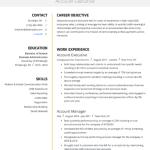 Accounts Executive Resume Sample 1