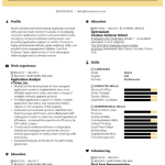 Application Development Analyst Resume Sample 2