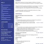 Application Specialist Resume Sample 1