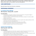Assistant Finance Manager Resume Example 2