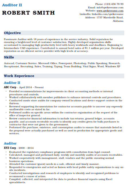 Auditor Resume Example 2