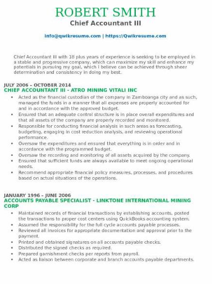Chief Accountant Resume Sample 5