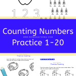 Counting Numbers Practice