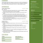 Digital Designer Resume Sample 3Digital Designer Resume Sample 3