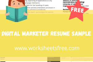 Digital Marketer Resume Sample