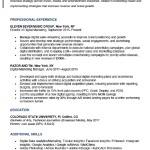 Digital Marketing Expert Resume Sample 1