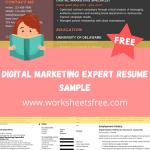 Digital Marketing Expert Resume Sample