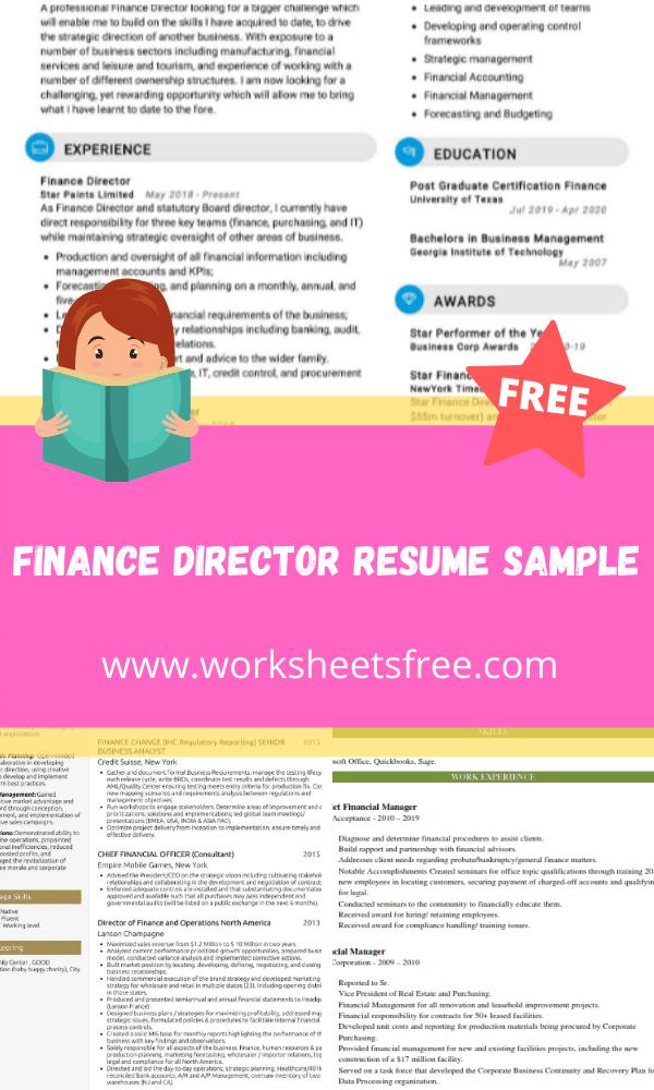 Finance Director Resume Sample