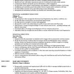 Finance Executive Resume Sample 1