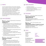 Finance Executive Resume Sample 3