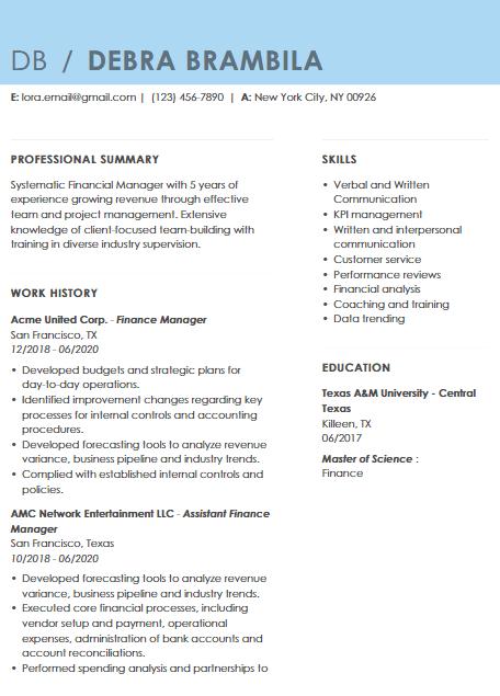 Finance Executive Resume Sample 4