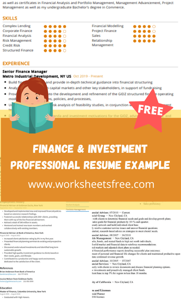Finance & Investment Professional Resume Example