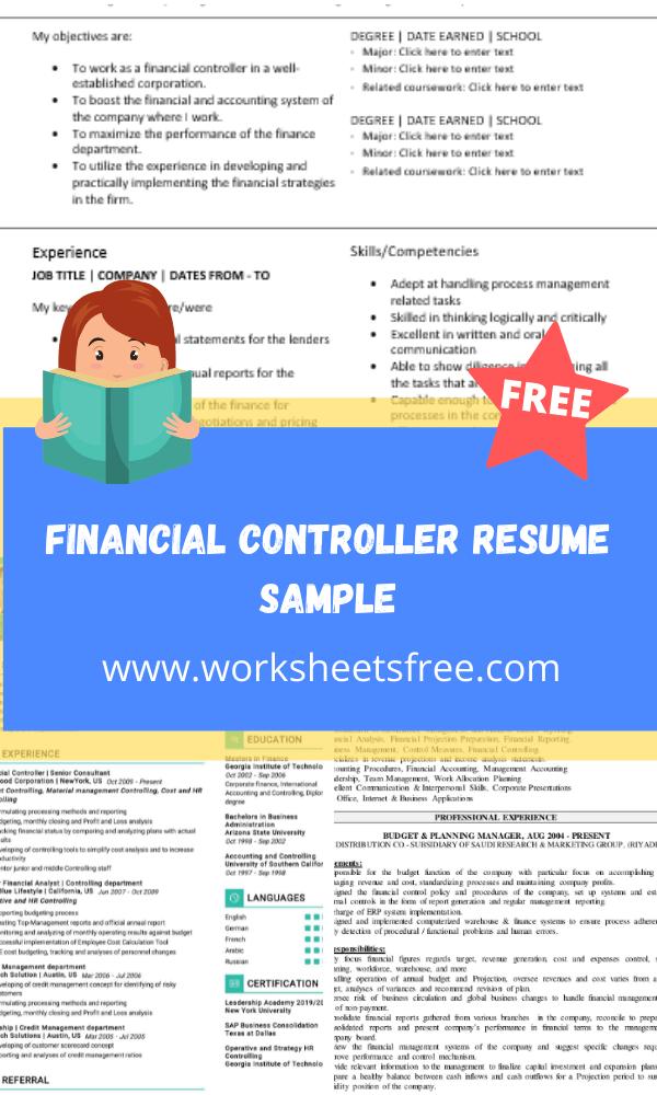 Financial Controller Resume Sample