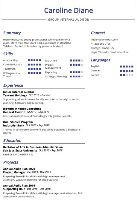 Group Internal Auditor Resume Sample 1