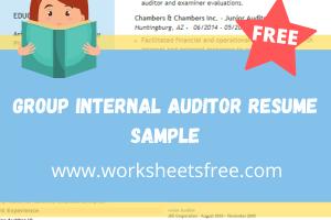 Group Internal Auditor Resume Sample