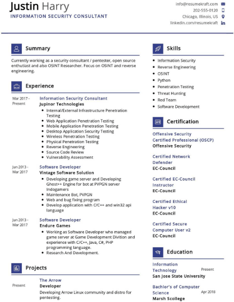 Information Security Consultant Resume Sample 1