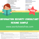 Information Security Consultant Resume Sample