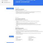 Junior Accountant Resume Sample 3