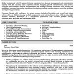 Junior Accountant Resume Sample 4