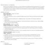 Online Store Manager Resume Sample 2