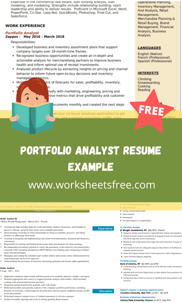Portfolio Analyst Resume Example