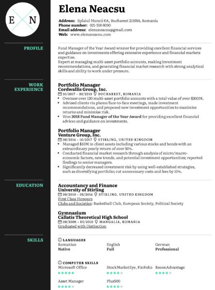 Portfolio Manager Resume Example 4