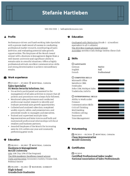 Salesforce CRM Resume Sample 3