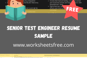Senior Test Engineer Resume Sample
