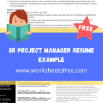 Sr Project Manager Resume Example