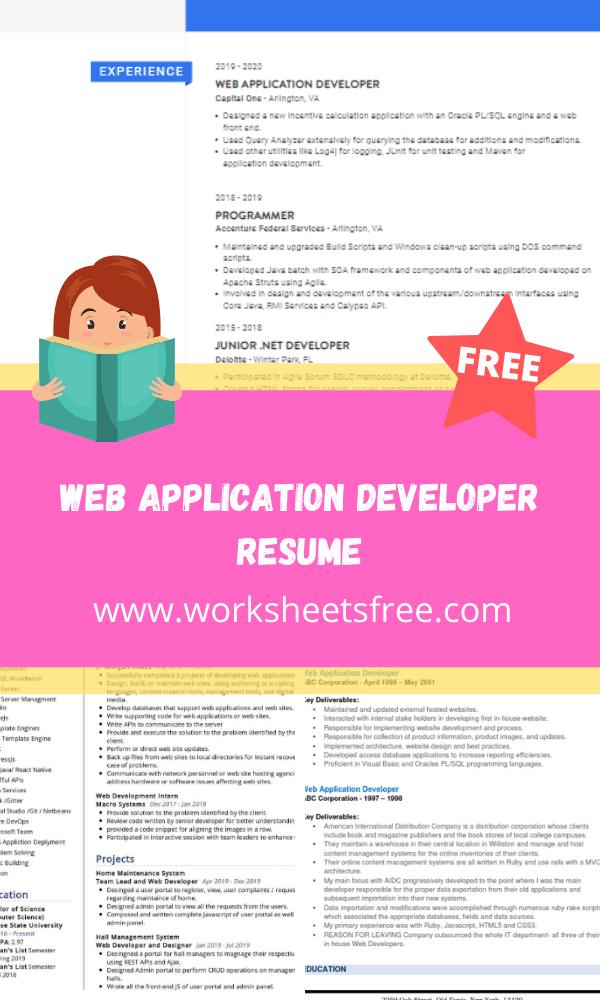 Web Application Developer Resume